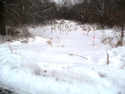 Photo of Wolforth Ave, Lot 99, Ravenna, OH 44266 (MLS # 4070164)