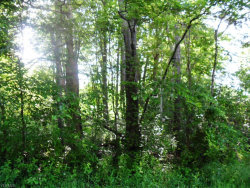 Photo of Lane Ave, Lot 29, Rootstown, OH 44272 (MLS # 4070270)