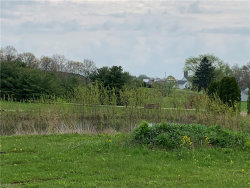 Photo of Shores Dr, Poland, OH 44514 (MLS # 4075978)