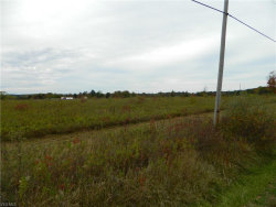 Photo of State Route 305 Vacant Land, Garrettsville, OH 44231 (MLS # 4083188)