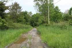 Photo of State Route 88, Windham, OH 44288 (MLS # 4135638)