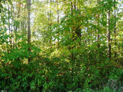 Photo of Broadway, Lot 1, Rootstown, OH 44272 (MLS # 4141246)