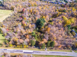 Photo of Savage Rd, Chagrin Falls, OH 44023 (MLS # 4146003)