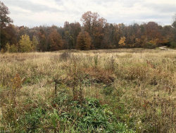 Photo of Cook Rd, Rootstown, OH 44272 (MLS # 4146375)