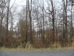 Photo of Muzzy Ave, Rootstown, OH 44272 (MLS # 4151779)