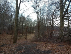 Photo of Powdermill Rd, Kent, OH 44240 (MLS # 4156040)