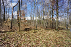 Photo of 11125 Eagles Nest, Lot #119, Canfield, OH 44406 (MLS # 4201955)