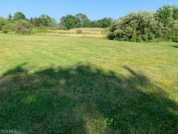 Photo of Cherry Hills Dr, Canfield, OH 44406 (MLS # 4202219)