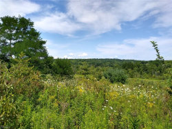 Photo of Parcel B State Route 700, Hiram, OH 44234 (MLS # 4208800)