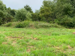 Photo of 603 South Raccoon Rd, Lot 58, Austintown, OH 44515 (MLS # 4217992)