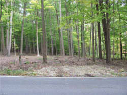 Photo of 3503 Cannon Rd, Lot 34, Twinsburg, OH 44087 (MLS # 4230078)