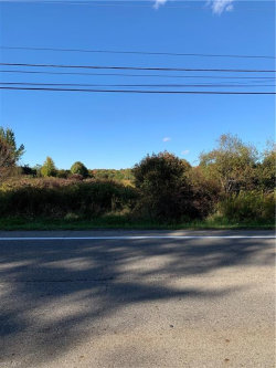 Photo of State Route 82, Hiram, OH 44234 (MLS # 4241247)