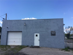 Photo of 8921 State Route 88, Windham, OH 44288 (MLS # 3888177)