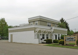 Photo of 669 East 200th St, Euclid, OH 44119 (MLS # 4141882)