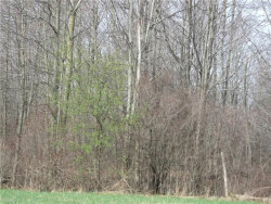 Photo of 6160 State Route 45, Lordstown, OH 44481 (MLS # 4159063)