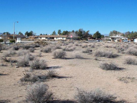 Photo for Ridgecrest, CA 93555 (MLS # 1950779)