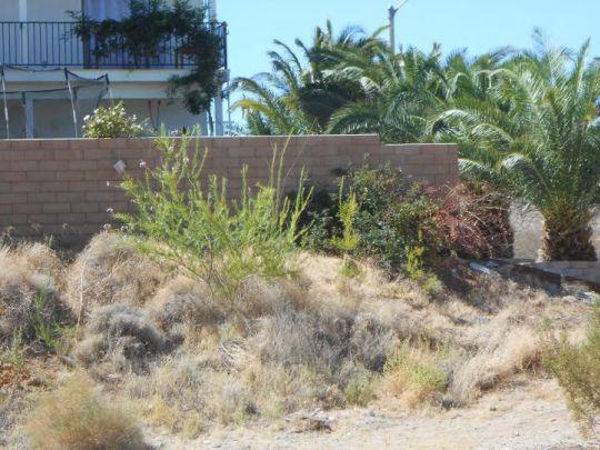 Photo for Ridgecrest, CA 93555 (MLS # 1952490)
