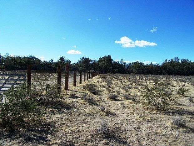 Photo for Ridgecrest, CA 93555 (MLS # 1954164)