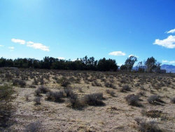 Tiny photo for Ridgecrest, CA 93555 (MLS # 1954164)
