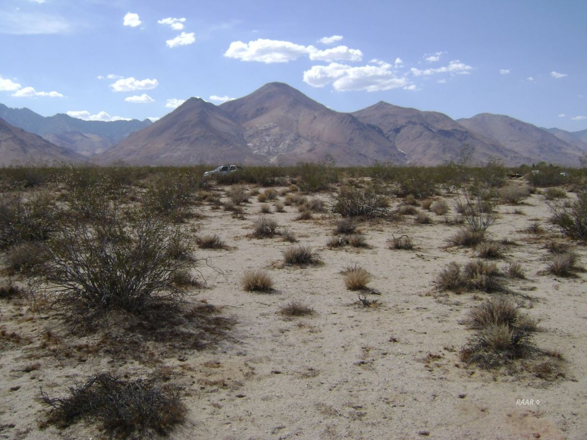 Photo for Inyokern, CA 93527 (MLS # 1955378)