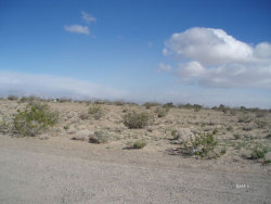 Tiny photo for Ridgecrest, CA 93555 (MLS # 1955383)