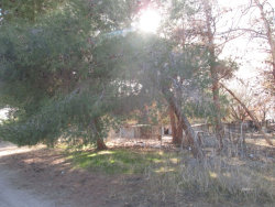 Tiny photo for Ridgecrest, CA 93555 (MLS # 1955437)