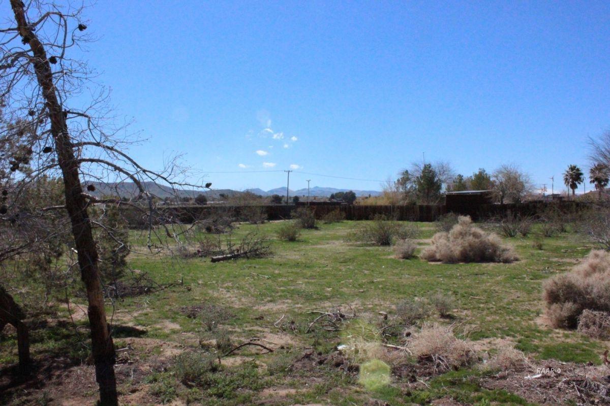 Photo for Ridgecrest, CA 93555 (MLS # 1955677)