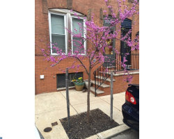Photo of 2337 S Lambert St, Philadelphia, PA 19145 (MLS # 7069848)
