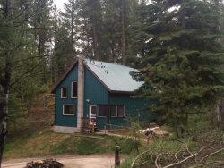 Photo of 205 Pole Cat Ridge Road, Cascade, ID 83611 (MLS # 524827)