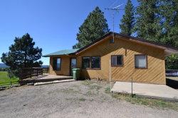 Photo of 1305 Samson Trail, McCall, ID 83638 (MLS # 525789)