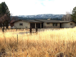 Photo of 3659 Southend Road, New Meadows, ID 83654 (MLS # 526285)