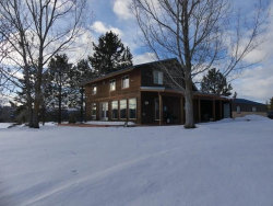 Photo of 14005 Hogue Hollow Drive, McCall, ID 83638 (MLS # 526522)