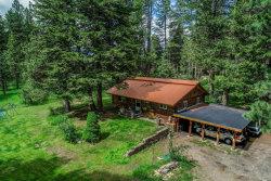 Photo of 1255 Samson Trail, McCall, ID 83638 (MLS # 527440)