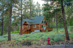 Photo of 3943 Lewis Drive, New Meadows, ID 83654 (MLS # 527455)