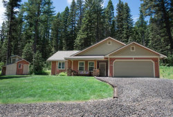 Photo of 1793 Canary Trail, Donnelly, ID 83615 (MLS # 527554)