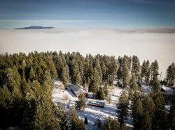 Photo of 502 Mountain Road, Cascade, ID 83611 (MLS # 528346)