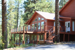 Photo of 13330 Vili Lane, McCall, ID 83638 (MLS # 529044)