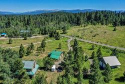 Photo of 1280 Samson Trail, McCall, ID 83638 (MLS # 529479)