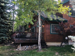 Photo of 957 Cottage Court, McCall, ID 83638 (MLS # 529716)