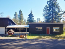 Photo of 1207 Boydstun Lane, McCall, ID 83638 (MLS # 531502)