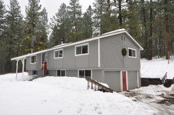 Photo of 1195 Samson Trail, McCall, ID 83638 (MLS # 531652)