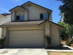 Photo of 293 Moretti LN, MILPITAS, CA 95035 (MLS # 81654732)