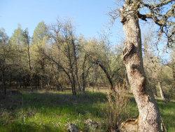 Photo of 30063007 Bear Mountain RD, REDDING, CA 96001 (MLS # 81515237)