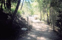Photo of 000 Highway 9, BOULDER CREEK, CA 95006 (MLS # 81655247)