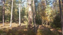 Photo of 0 Countrywood Lot 26 LN, NEVADA CITY, CA 95959 (MLS # 81655834)