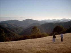 Photo of 00 Pine Canyon, KING CITY, CA 93930 (MLS # 81655980)