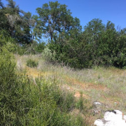 Photo of 16338 12th AVE, CLEARLAKE, CA 95422 (MLS # ML81590983)