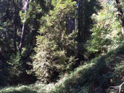 Photo of 0 Locust DR, LOS GATOS, CA 95033 (MLS # ML81640769)