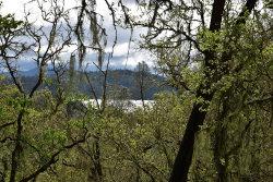Photo of 2658 Pine Ridge RD, BRADLEY, CA 93426 (MLS # ML81643919)