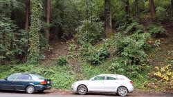 Photo of 0 East Zayante RD, FELTON, CA 95018 (MLS # ML81653631)